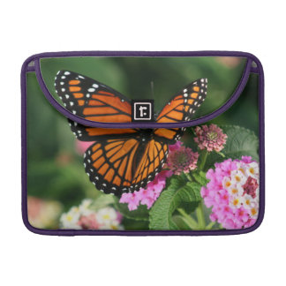 Capa MacBook Pro Borboleta bonita na flor do Lantana