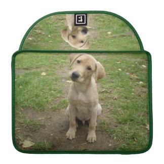 Capa MacBook Pro O filhote de cachorro de Labrador inclina a cabeça