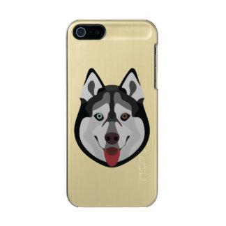Capa Metálica Para iPhone SE/5/5s A ilustração persegue o rouco Siberian da cara