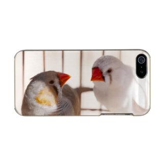 Capa Metálica Para iPhone SE/5/5s Dois pássaros bonitos do passarinho na gaiola