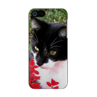 Capa Metálica Para iPhone SE/5/5s Gato impressionante do smoking no jardim