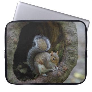 Capa Para Computador A bolsa de laptop do esquilo