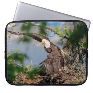 Capa Para Computador Águia americana que sae do ninho