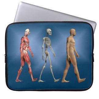 Capa Para Computador Anatomia humana