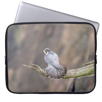Capa Para Computador Falcão de peregrino no parque de um estado a outro