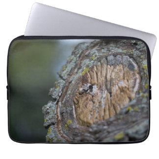 Capa Para Computador Fotografia do coto de árvore