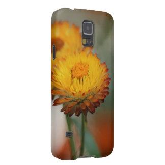 Capa Para Galaxy S5 Strawflower dourado