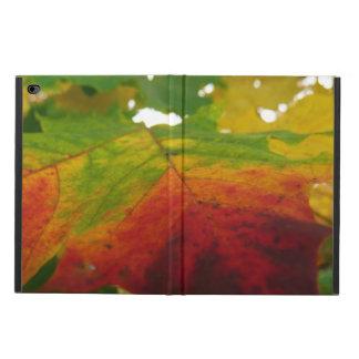 Capa Para iPad Air 2 Cores da fotografia da natureza do outono da folha