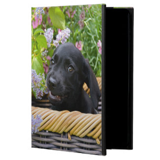 Capa Para iPad Air 2 Foto preta bonito do filhote de cachorro do cão de