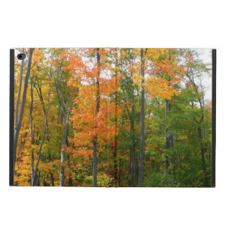 Capa Para iPad Air 2 Fotografia da natureza do outono das árvores de