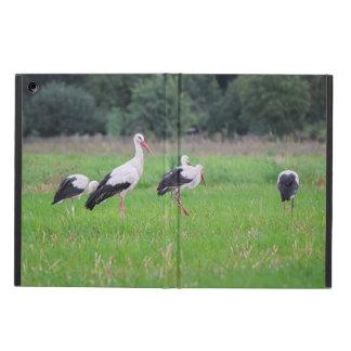 Capa Para iPad Air Cegonhas brancas da migração, ciconia, em um prado