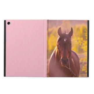 Capa Para iPad Air coleção do cavalo. outono