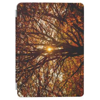 Capa Para iPad Air Folhas de outono