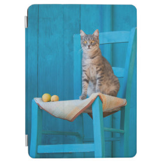 Capa Para iPad Air Gatinho bonito do gato de gato malhado na foto de