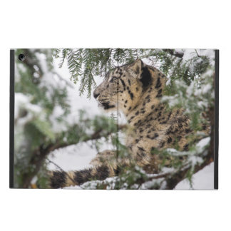 Capa Para iPad Air Leopardo de neve sob Bush nevado