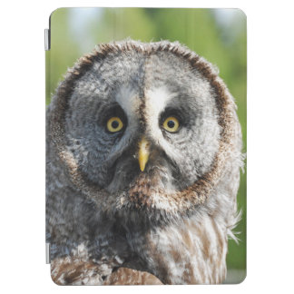 Capa Para iPad Air Owl_20180219_by_JAMFoto