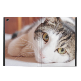 Capa Para iPad Air Pet por favor me