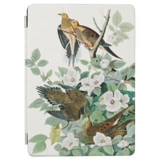 Capa Para iPad Air Pomba da tartaruga de Carolina, pássaros de