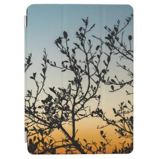 Capa Para iPad Air Por do sol de Austin no inverno
