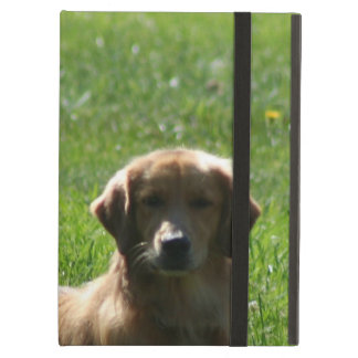 Capa Para iPad Air Retrievers dourados