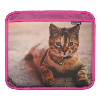 Capa Para iPad Animal de estimação novo bonito do gatinho do