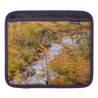 Capa Para iPad Cena colorida da paisagem da floresta, Patagonia