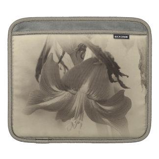 Capa Para iPad Flor antiga do Amaryllis