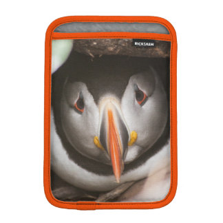 Capa Para iPad Mini Exemplo do papagaio-do-mar