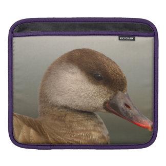 Capa Para iPad Pato fêmea do larro, rufina do netta