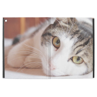 "Capa Para iPad Pro 12.9"" Pet por favor me"