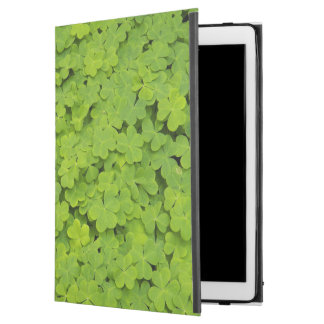 "Capa Para iPad Pro 12.9"" Trevos verdes florais"