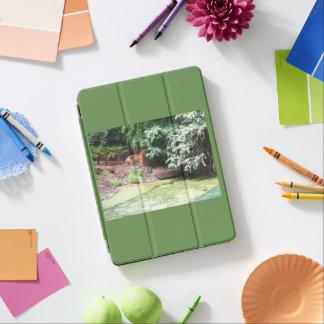 Capa Para iPad Pro Cobrir do tigre 9.7inch Apple do jardim zoológico