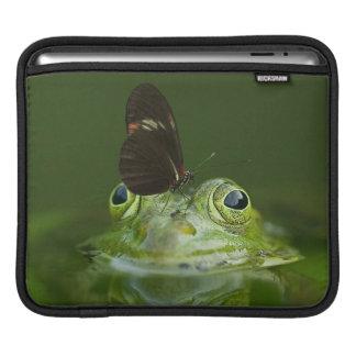 Capa Para iPad Sapo verde e borboleta