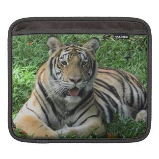 Capa Para iPad Tigre alaranjado