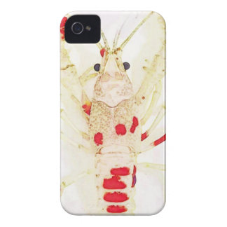Capa Para iPhone 4 Case-Mate 15873579_1416330921732017_2539621766324574947_n.jp