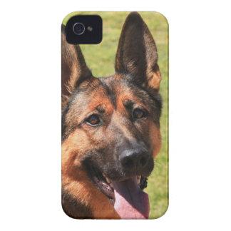 Capa Para iPhone 4 Case-Mate German shepherd de Malinois do belga
