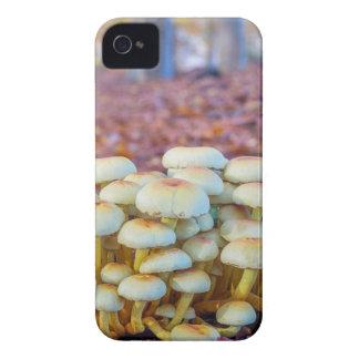 Capa Para iPhone 4 Case-Mate Grupo de cogumelos na floresta da faia da queda