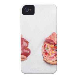 Capa Para iPhone 4 Case-Mate Mãos que guardaram o modelo do órgão humano do rim
