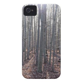Capa Para iPhone 4 Case-Mate Uma floresta da faia na queda