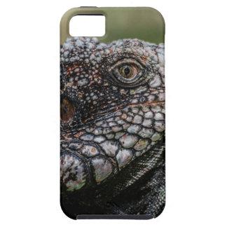 Capa Para iPhone 5 1920px-Iguanidae_head_from_Venezuela