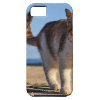Capa Para iPhone 5 A cara nova bonito animal dispersa do gato Eyes a