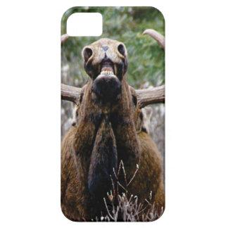Capa Para iPhone 5 alces estranhos do touro