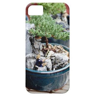 Capa Para iPhone 5 Árvore dos bonsais