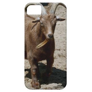 Capa Para iPhone 5 Bill