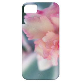 Capa Para iPhone 5 BlushedPink