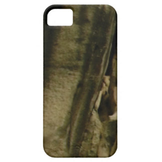 Capa Para iPhone 5 borda cinzenta da cara da rocha