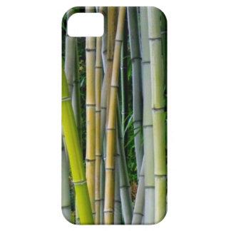 Capa Para iPhone 5 Bosque de bambu bonito