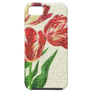 Capa Para iPhone 5 Caligrafia vermelha das tulipas