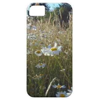 Capa Para iPhone 5 Campo das margaridas