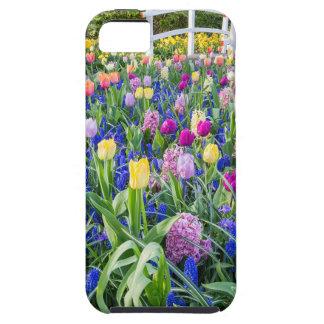 Capa Para iPhone 5 Campo de flores com jacintos e ponte das tulipas